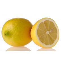 Limonero dulce en maceta mascotas y jardines - Limonero en maceta ...